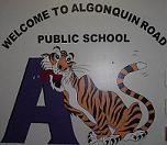 Algonquin_Tiger_Internet