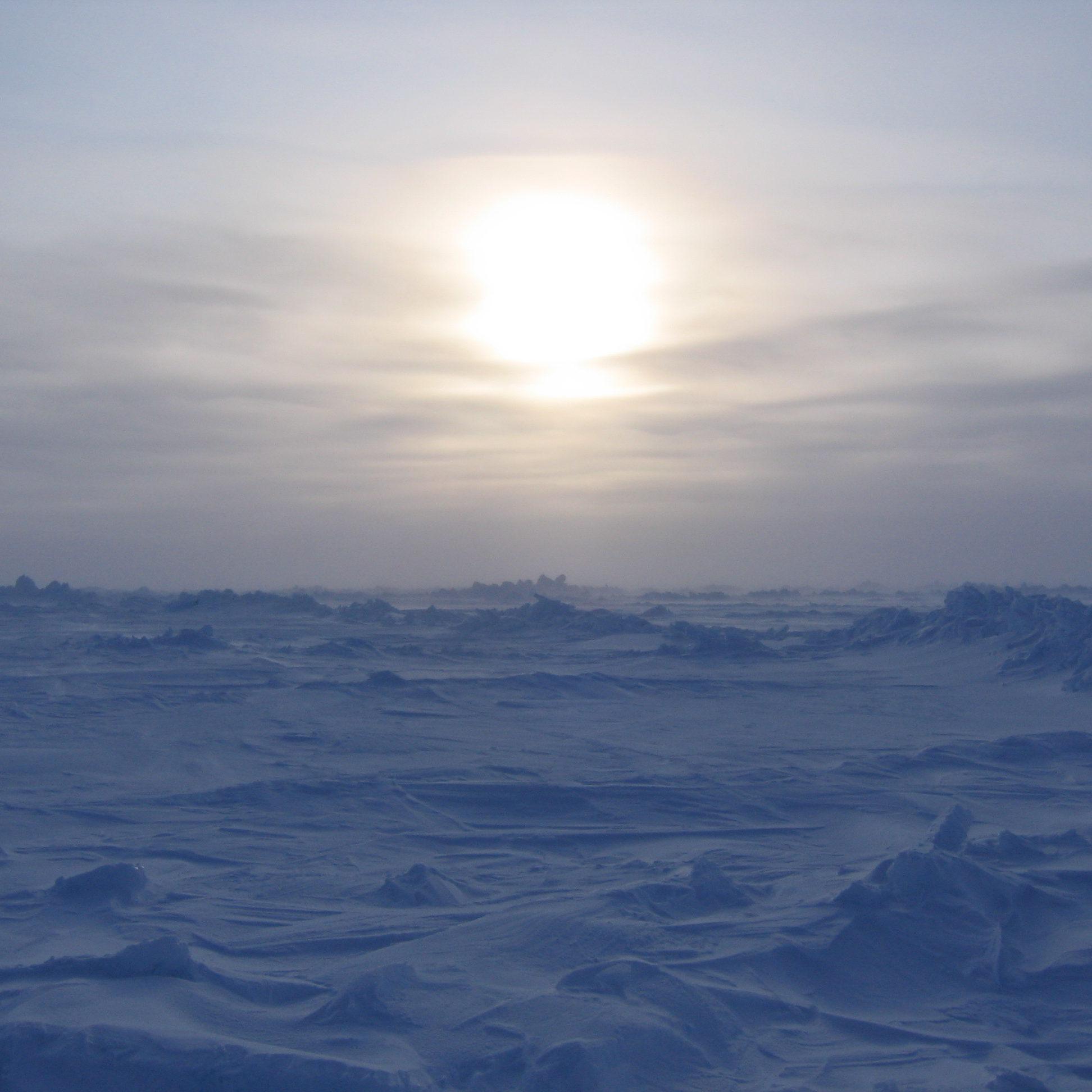 Meagan_McGrath-North_Pole